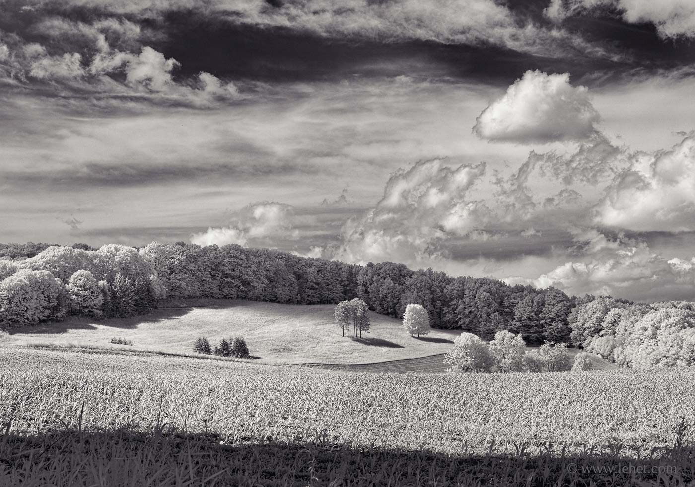 Spring Cornfield, Hay Field, Clouds Hartland Vermont