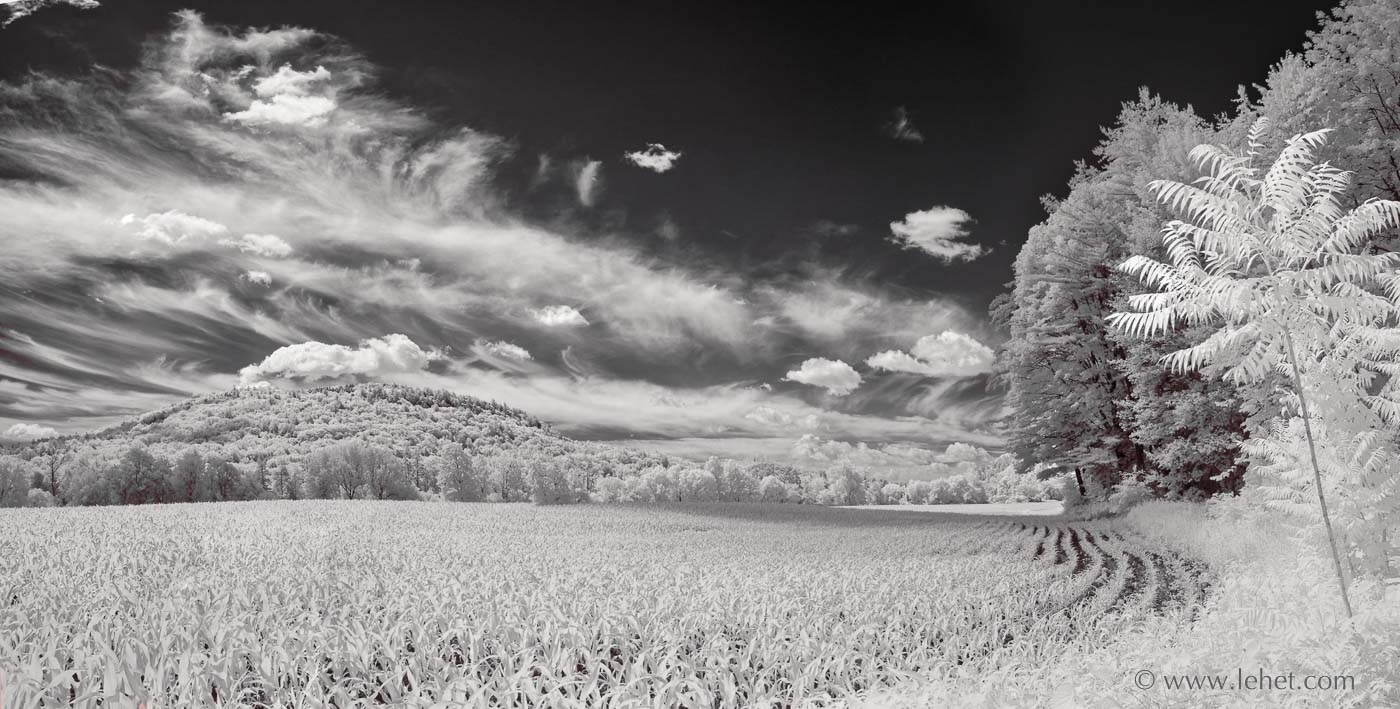 Cornfield and cirrus clouds, Vermont