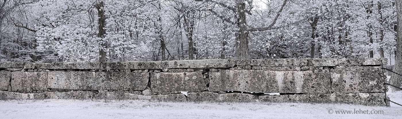 Stone Wall, Light through trees, Maine