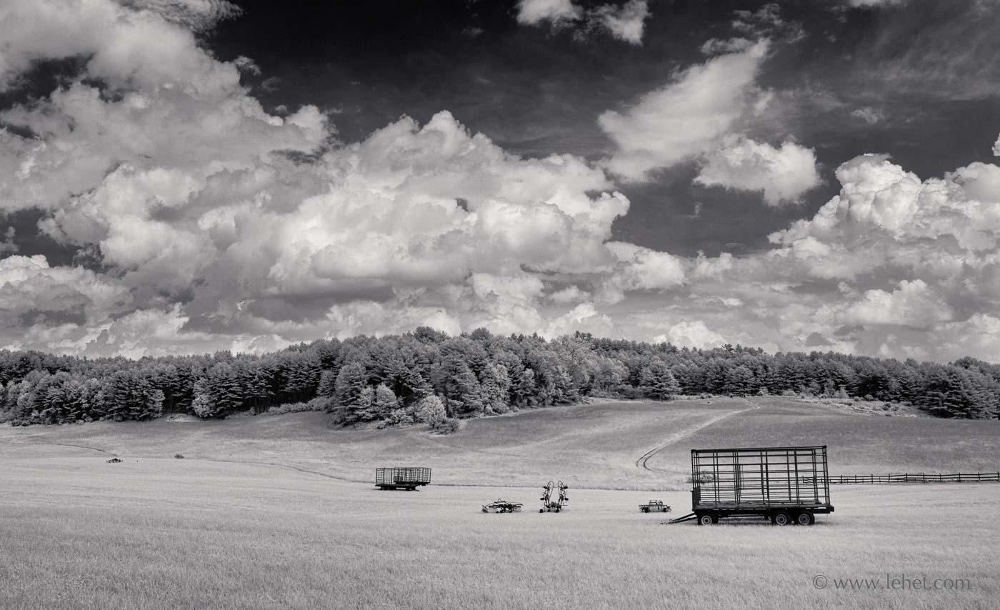 Uncut hayfield Norwich Vermont