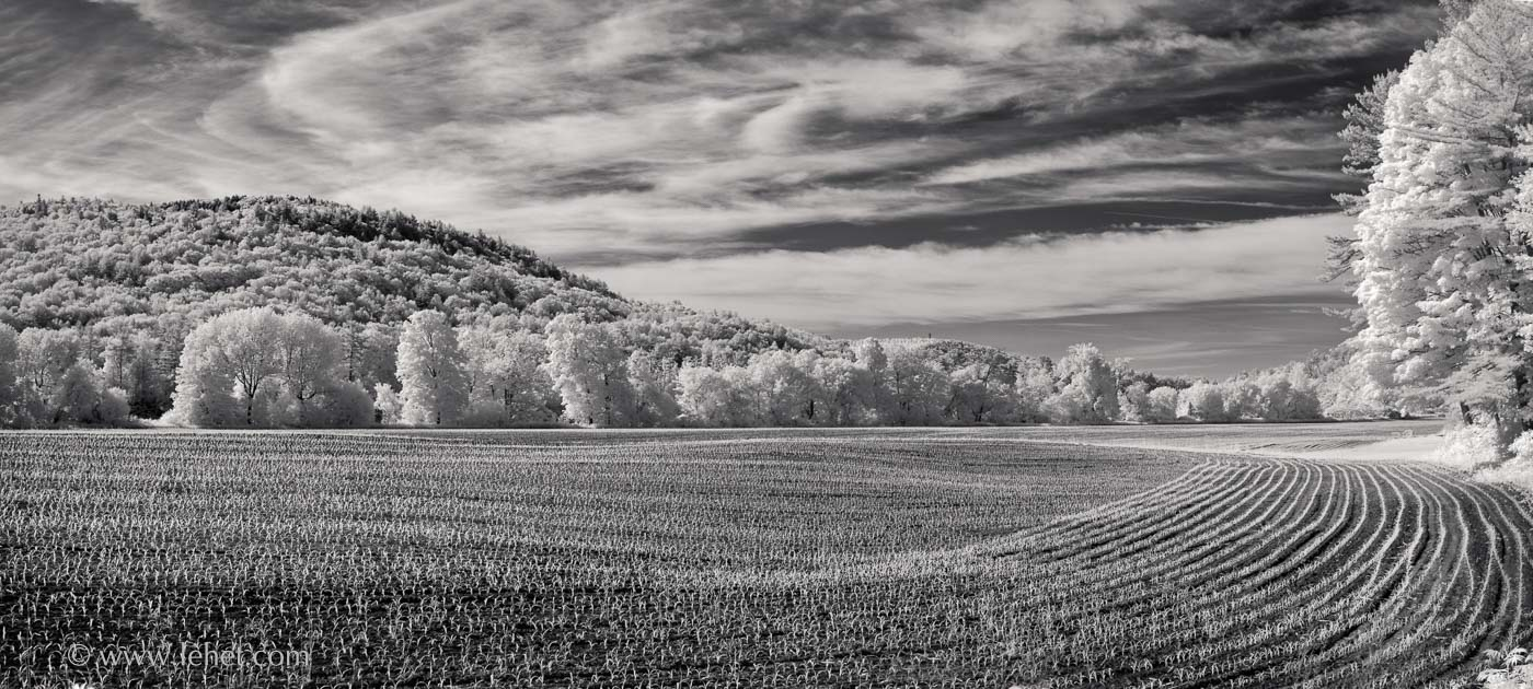 Spring Cornfield and Echo Curve Cloud, Vermont 2016