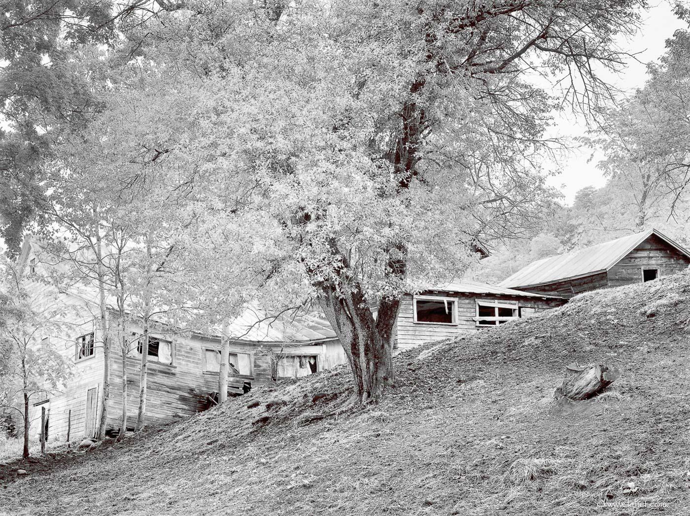 Tunbridge Vermont Barn Black and White Film Photo