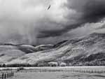 Fences, Hawk, and Storm, Colorado