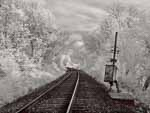 Railroad Track and Old Signal Switch, Vermont