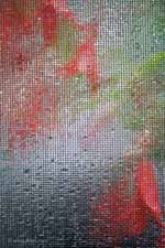 Orange and Scarlet Begonias Through Wet Screen, Vertical