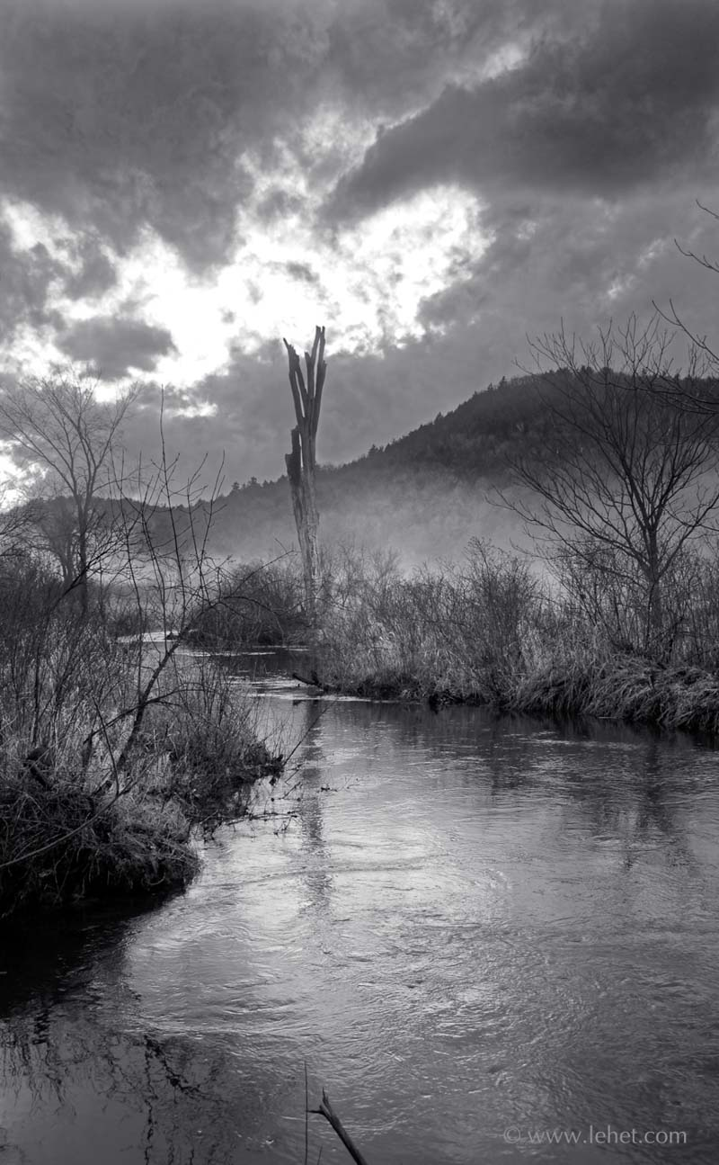 Trout Brook into Post Pond, Lyme New Hampshire, Black and White
